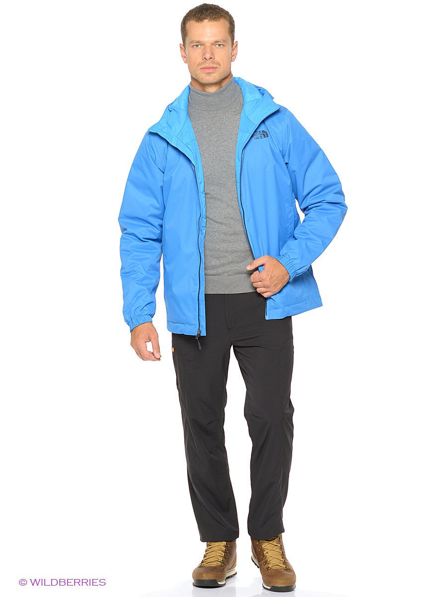 Куртка The North Face (Норт Фейс) T0C302G8N