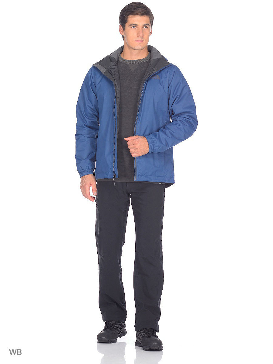 Куртка The North Face (Норт Фейс) T0C302UXN
