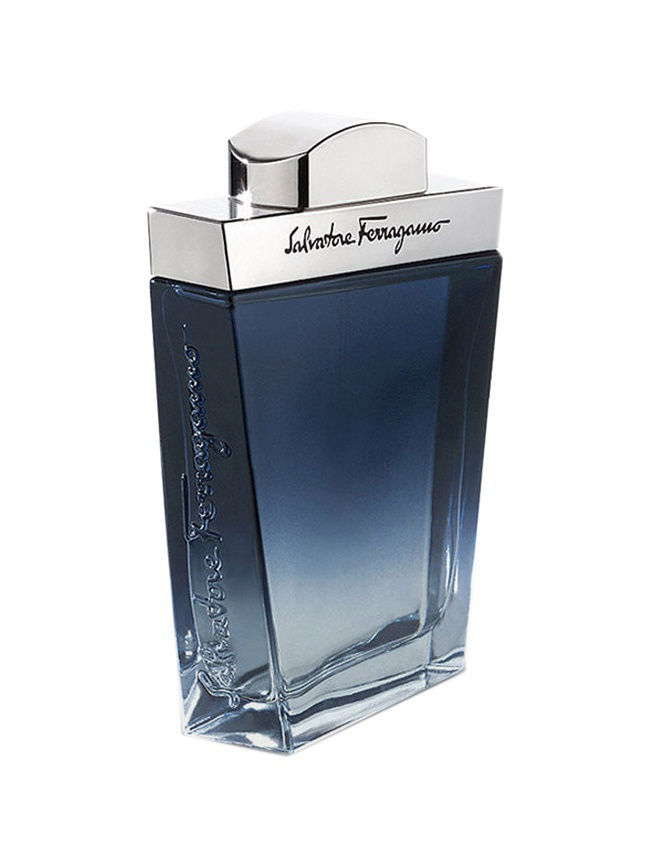 Туалетная вода Salvatore Ferragamo Salvatore Ferragamo Subtil Pour Homme 100ml EDT Vapo keratin smoothing treatment 12% formlain 1000ml keratin for hair high quality keratin hair straightening products good effect